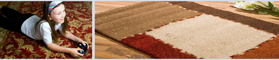 bakers chem dry area rugs cleaning
