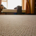Don't Let Muddy Carpet Ruin your Day – Here's Some Tips to get Mud out Fast!