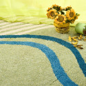 DIY Carpet Cleaning tips from the pros